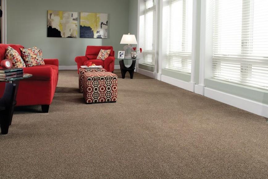 La Grange Park 60526 Carpet Stores