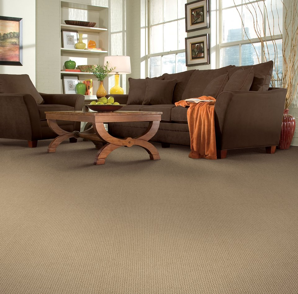 Batavia carpet desitter flooring find the flooring solution thats right for you with the largest batavia carpet selection by desitter flooring we have a vast inventory or various colors tyukafo