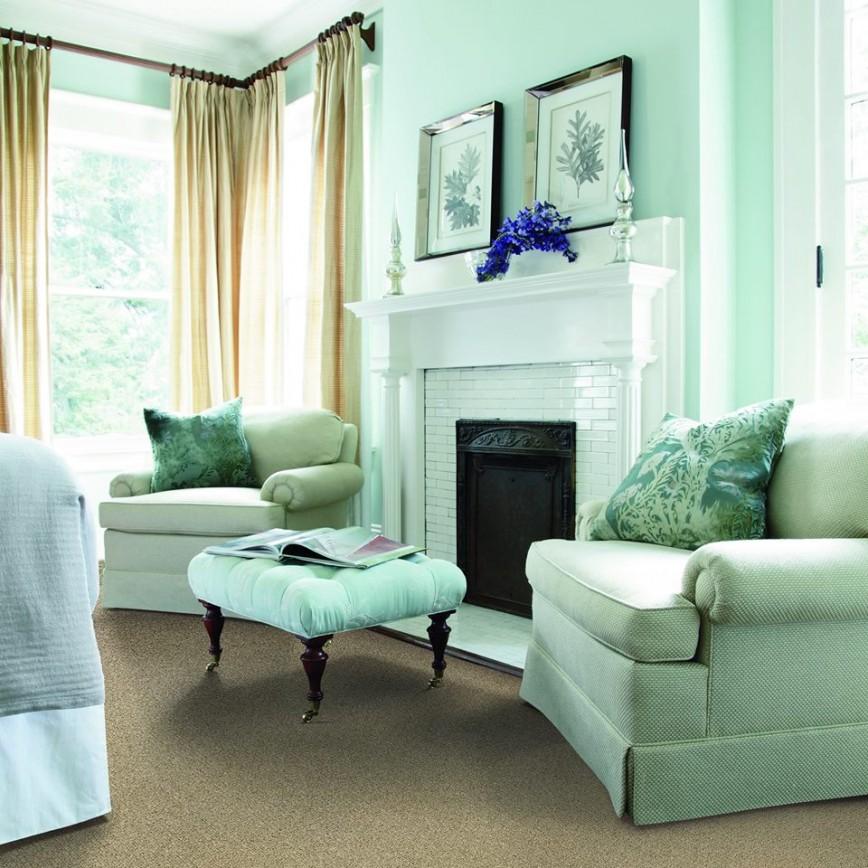 Batavia 60510 Carpet Store & Carpeting Installations