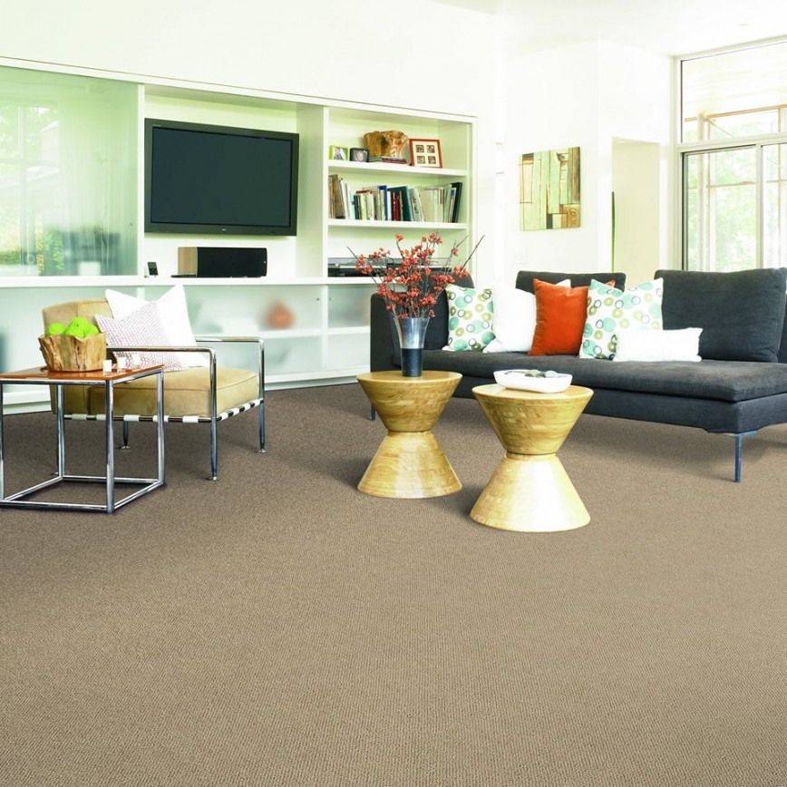 Brookfield 60513 Carpet Store & Carpeting Installations