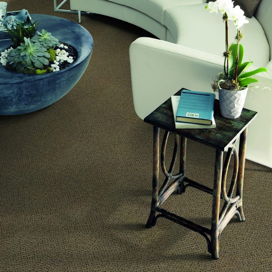Oak Park 60302 Carpet Store & Carpeting Installations