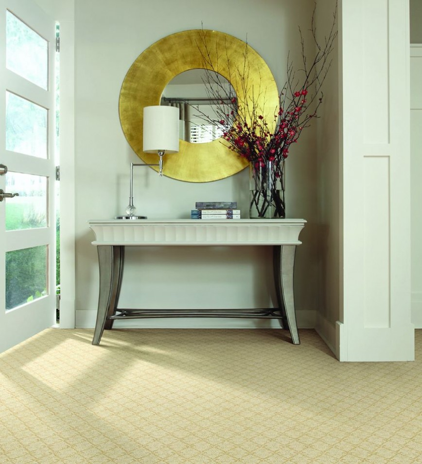 Riverside 60546 Carpet Store & Carpeting Installations