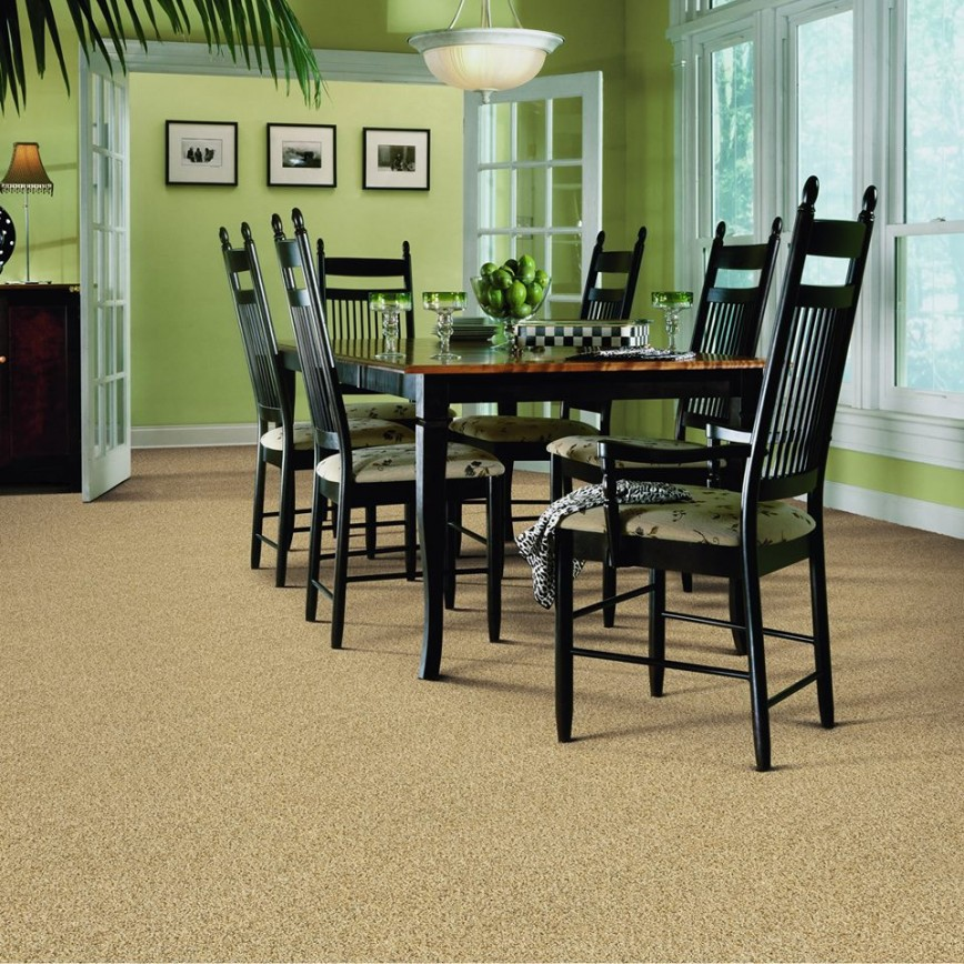 Burr Ridge 60527 Carpet Store & Carpeting Installations