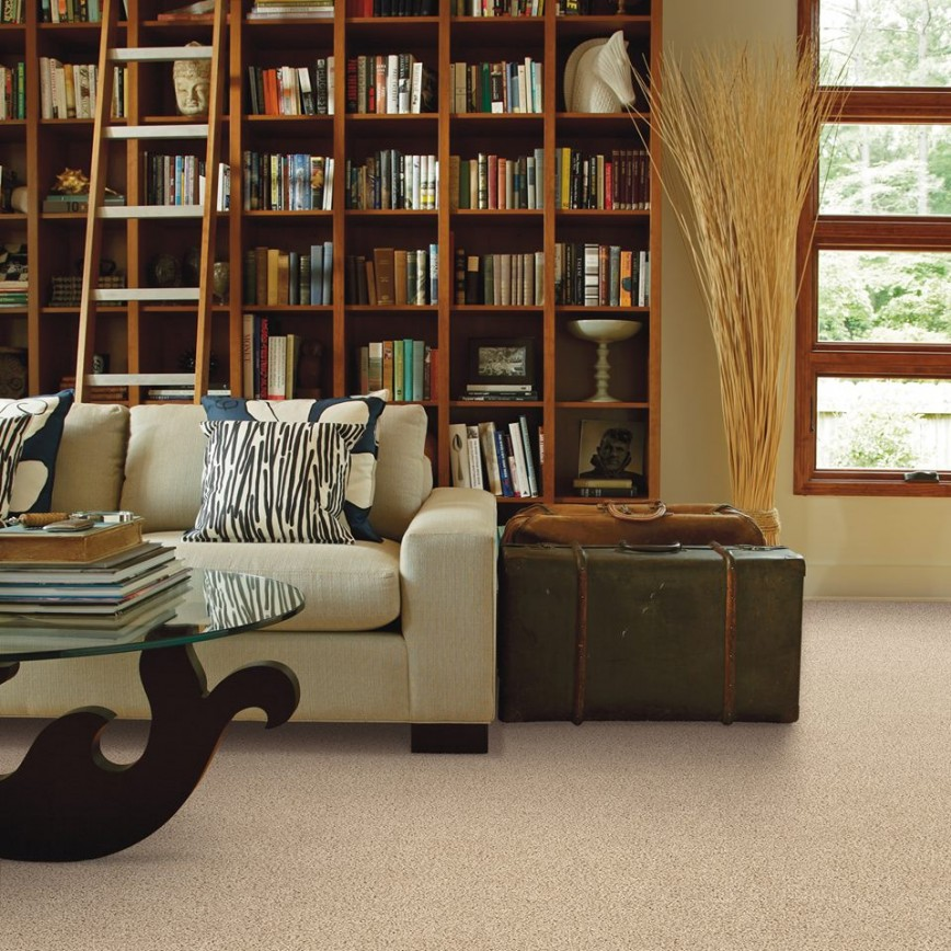 Glen Ellyn 60137 Carpet Store & Carpeting Installations